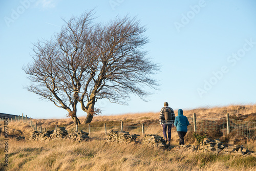 Платно Walkers in the countryside
