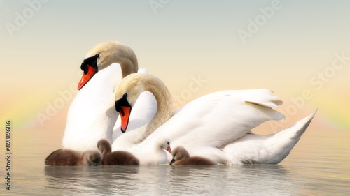 In de dag Zwaan Swan family - 3D render
