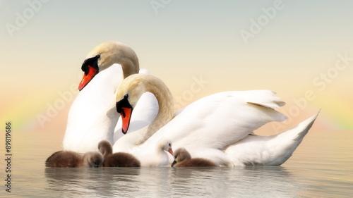 Deurstickers Zwaan Swan family - 3D render