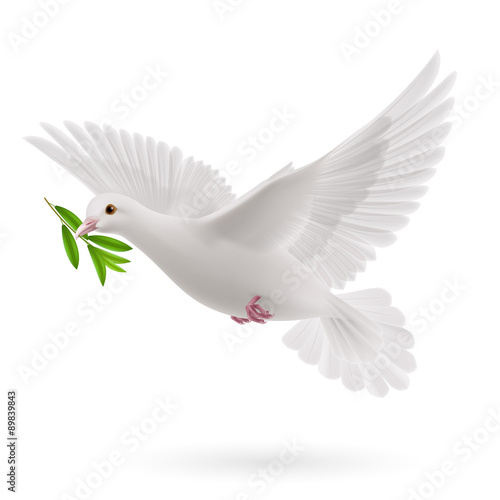 Fly dove Wall mural