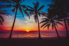 Sunset Tropical Beach.  Beautiful Sunset