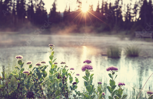 Spoed Foto op Canvas Aubergine Picture lake