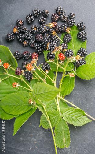 Fényképezés  Blackberries on wooden background