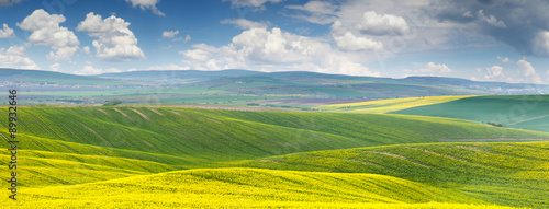 Spoed Foto op Canvas Geel Panoramic background of beautiful yellow-green floral canola fie