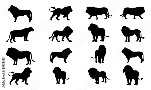 Lion Silhouette, set vector Animals Icons
