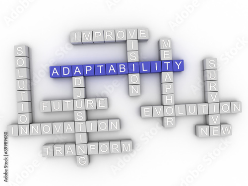 Photo 3d image Adaptability word cloud concept