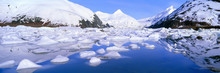 Icebergs In Portage Lake And P...