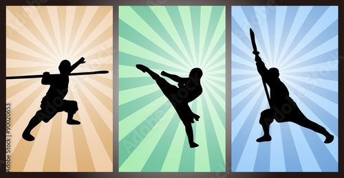 Fotografia  Chinese Kung Fu, Wushu