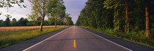 This Is A Tree Lined Road At Sunset. It Is Located On The Eastern Shore Of Maryland. The Road Travels Through The Center Of The Trees.