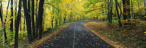This is the Greylock State Reservation in autumn Wallpaper Mural