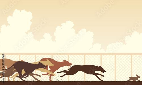 Fotografie, Tablou Greyhound dog race