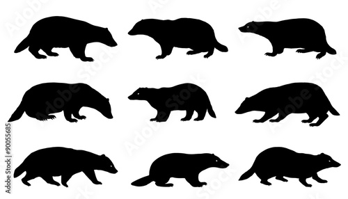 badger silhouettes Canvas Print