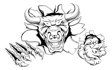 Bull Mascot Breakthrough