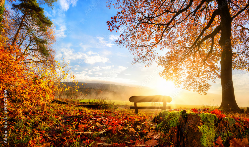Fototapeta Zauberhafte Herbstszene