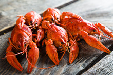 Boiled Crayfish On A Wooden Ta...