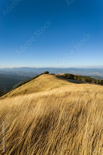 The summit of Mount Pratomagno in Tuscany (Italy). A particular mountain whose peak is constituted by a large lawn area with little vegetation.