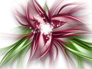 Obraz abstract flower