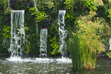 Fototapeta cascade dans un jardin public