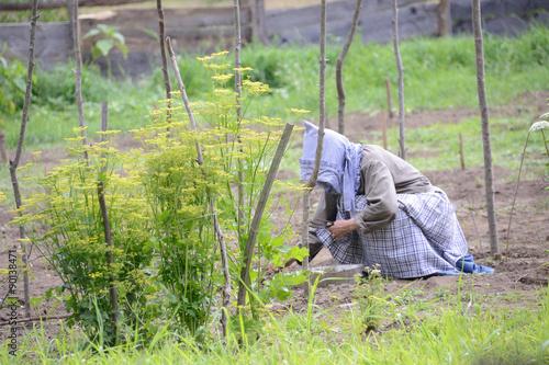 Photographie  19th Century Gardener