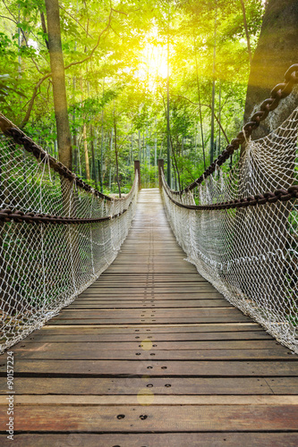 Foto op Aluminium Brug Suspension bridge in the forest