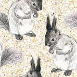 wektor wzór z rysunek wiewiórki i kropki - 90200003