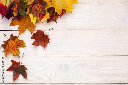 Fototapeta Autumn background with colorful leaves on wooden background obraz