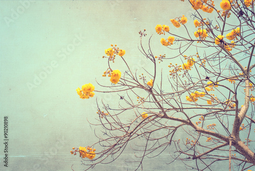 nature of vintage tree flower in summer ,canvas paper art texture