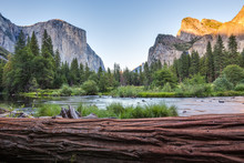 Classic View Of Yosemite Valle...