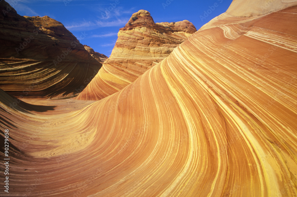 Valokuva  Close up of sandstone stripes, 'The Wave' on Kenab Coyote Butte, BLM, Slot Canyo