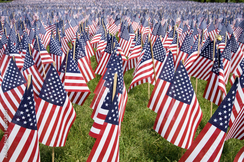 Cuadros en Lienzo  20,000 American Flags are displayed for every resident of Massachusetts who died