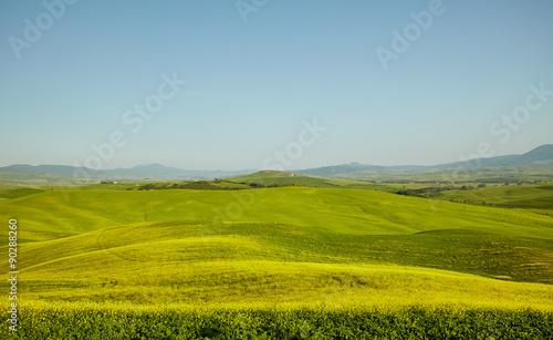 Photo  Green Tuscany hills