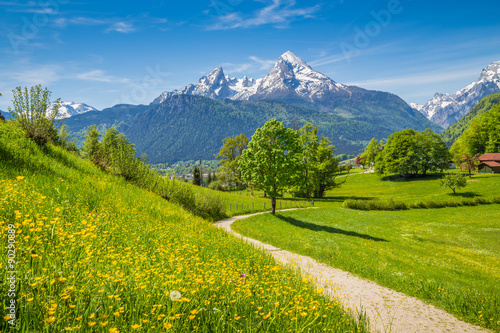 Fotobehang Pistache Idyllic landscape in the Alps with meadows and flowers