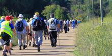 Pèlerinage Marcheurs Groupe
