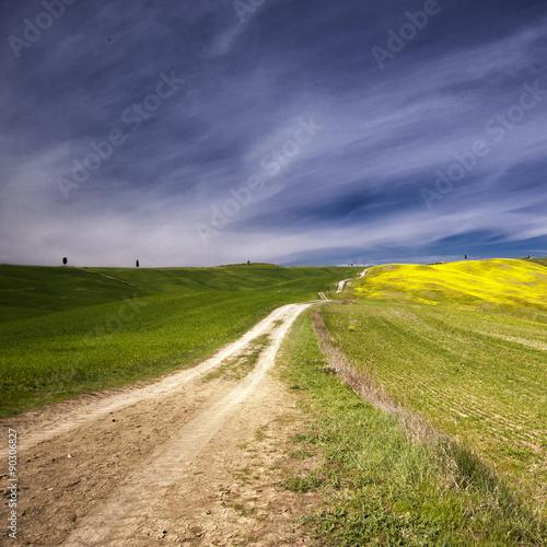 Fotografie, Obraz  Tuscan Landscape