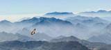 szybowiec na szczytach Picos de Europa w Asturii (Hiszpania) - 90337463