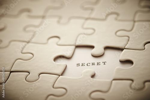 SECRET word Canvas Print