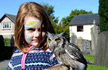 Young Girl With Scops Owl