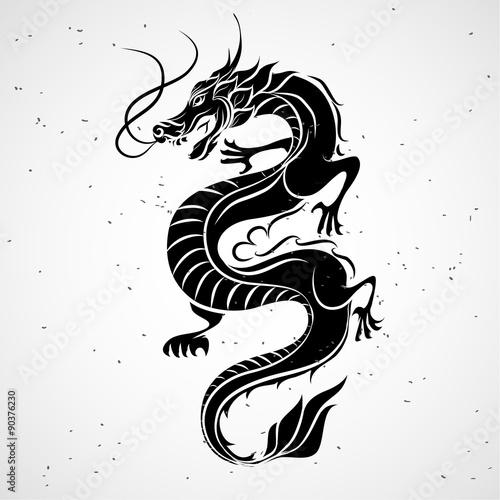 Fotografie, Tablou  Dragon logo