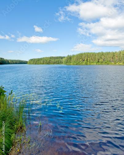 Printed kitchen splashbacks Lake Озеро в Карелии