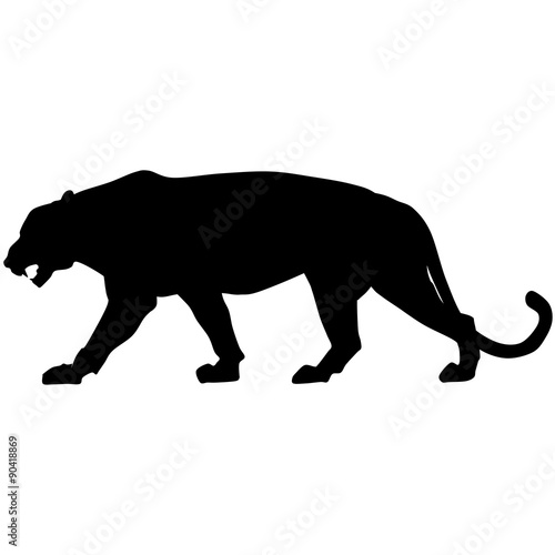 Photo  Vector black panther is walking and roaring