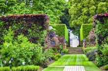 Formal Summer Garden With Gras...