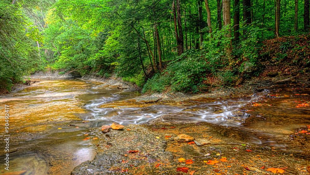 Fototapeta Brandywine Creek Falls