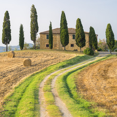Fototapeta Toskania road to farm in Tuscany in Italy