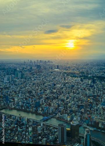 Foto op Plexiglas Blauw 東京の夕焼け(縦)