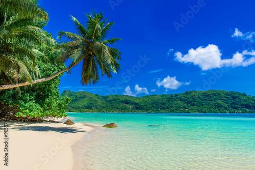 Poster Tropical plage Anse a La Mouche - Paradise beach in Seychelles, Mahe