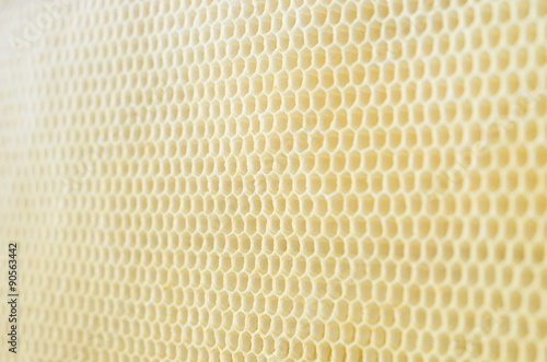Türaufkleber Makrofotografie honeycombs in the depth of field