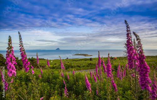 Photo Farbenfrohe Küstenlandschaft auf Insel Arran Hebriden Schottland