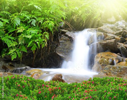 Keuken foto achterwand Watervallen Mountain creek in the Swiss Alps