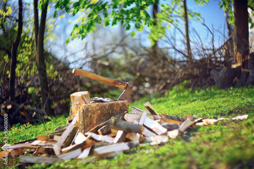In de dag Brandhout textuur Axe and logs on the stump