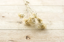 Dry Flower On Wood Background ...